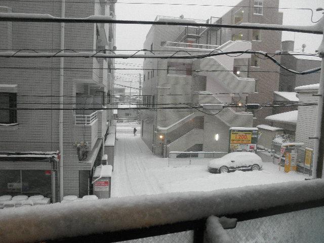 大雪横浜2