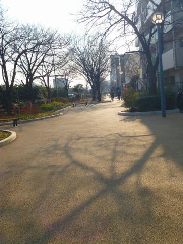 お散歩道②