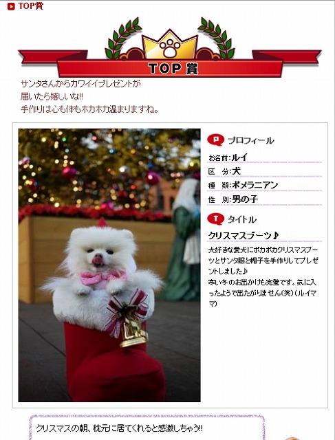 TOP賞12月