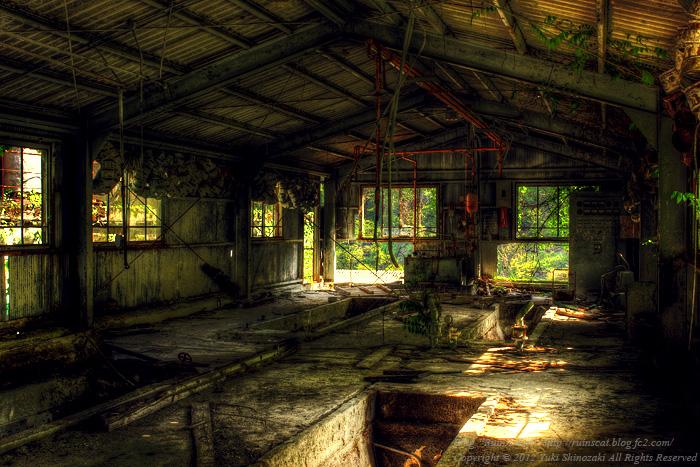 IMG_1707_8_9_tonemapped_ruinscat.jpg