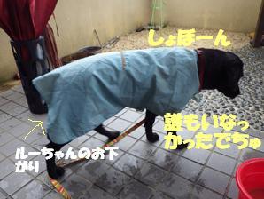 マー6ヶ月 後半雨の日 002