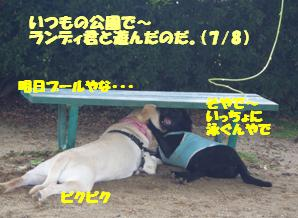 コピー ~ マー7ヶ月ぷーる2 002