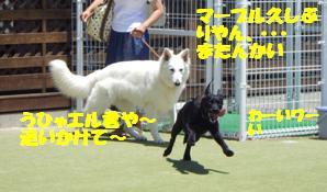 コピー ~ マー7ヶ月ぷーる2 025