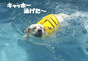 コピー ~ マー7ヶ月ぷーる2 093