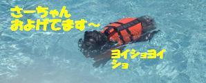 コピー ~ マー7ヶ月ぷーる2 086
