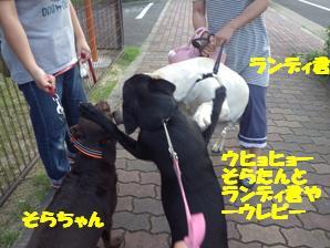マー8かあ月 (1)