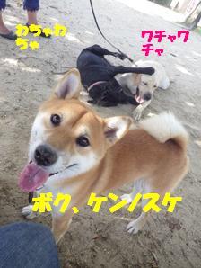 9/16公こうえん (1)