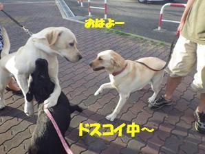 9/16公こうえん (2)