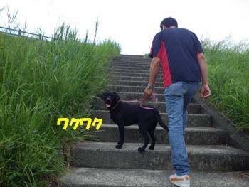 9/23きずかわ (1)