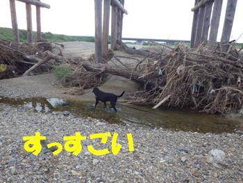9/23きずかわ (8)