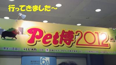 ペット博2012 (3)