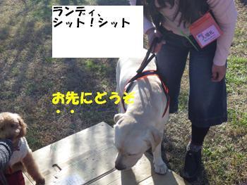 わんどうかい (7)