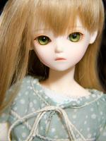 TF Olive