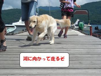 DSCN3727_convert_20120730143328.jpg
