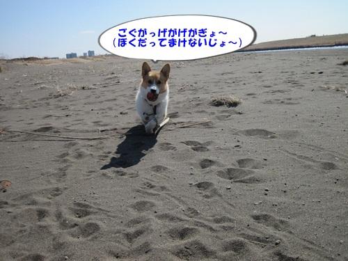 IMG_5813_20130224093200.jpg