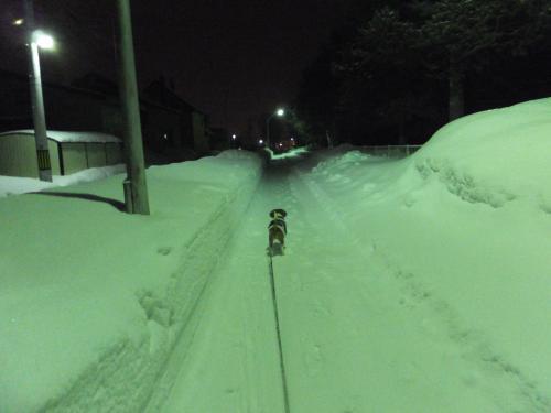 雪降る夜に1
