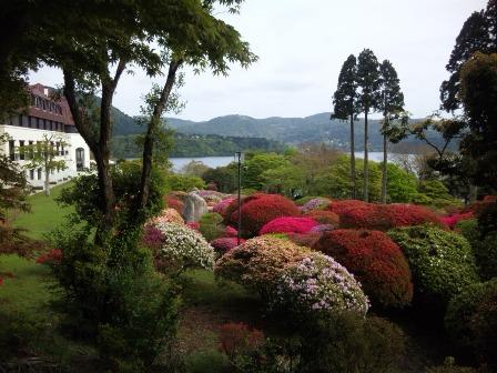 芝桜 つつじ 5 SH3J0597