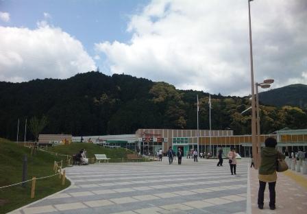 芝桜 新東名静岡パーキング2 SH3J0552