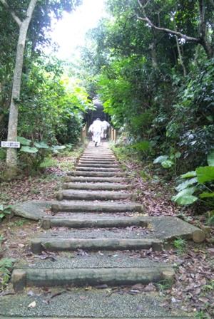 小浜島:うふだけ展望台登り道