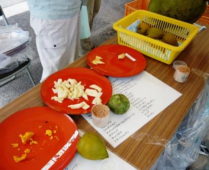 20 熱研一般公開:熱帯果樹試食(カニステル、白サポテ)