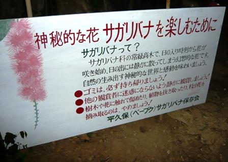 サガリバナ:注意書き看板