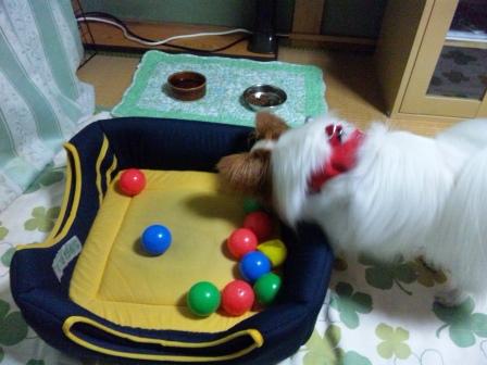 みかちゃんのボール