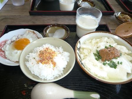 豆腐の比嘉3