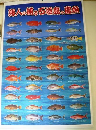 まるなか:魚ポスター