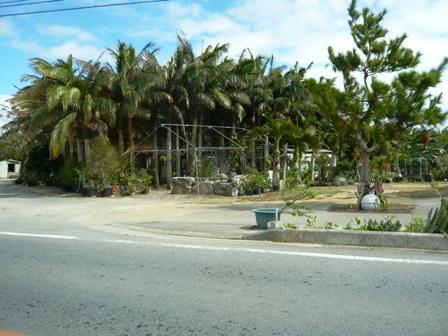 椰子の家:閉店跡地