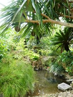 舟蔵の里:庭園1