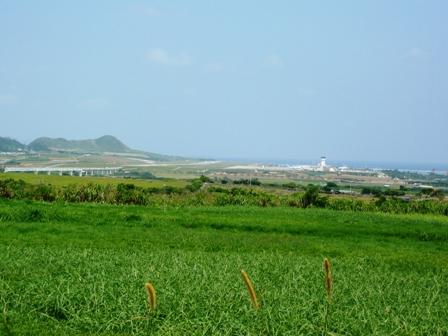 新石垣空港:牧草地からの遠景