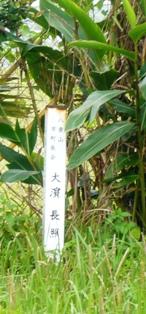 ミバエ根絶記念碑2:大濱