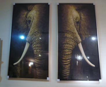 象さん1007.2