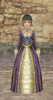 貴婦人のドレス