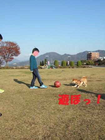 blog8251.jpg