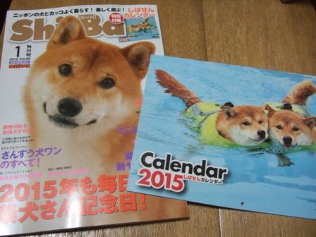 blog8309.jpg