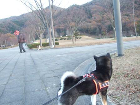 blog8342.jpg