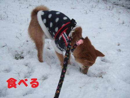blog8357.jpg