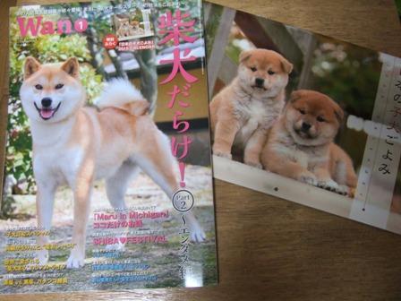 blog8362.jpg