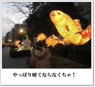中島川を行く