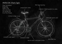 Black-Eagle-Illust.jpg