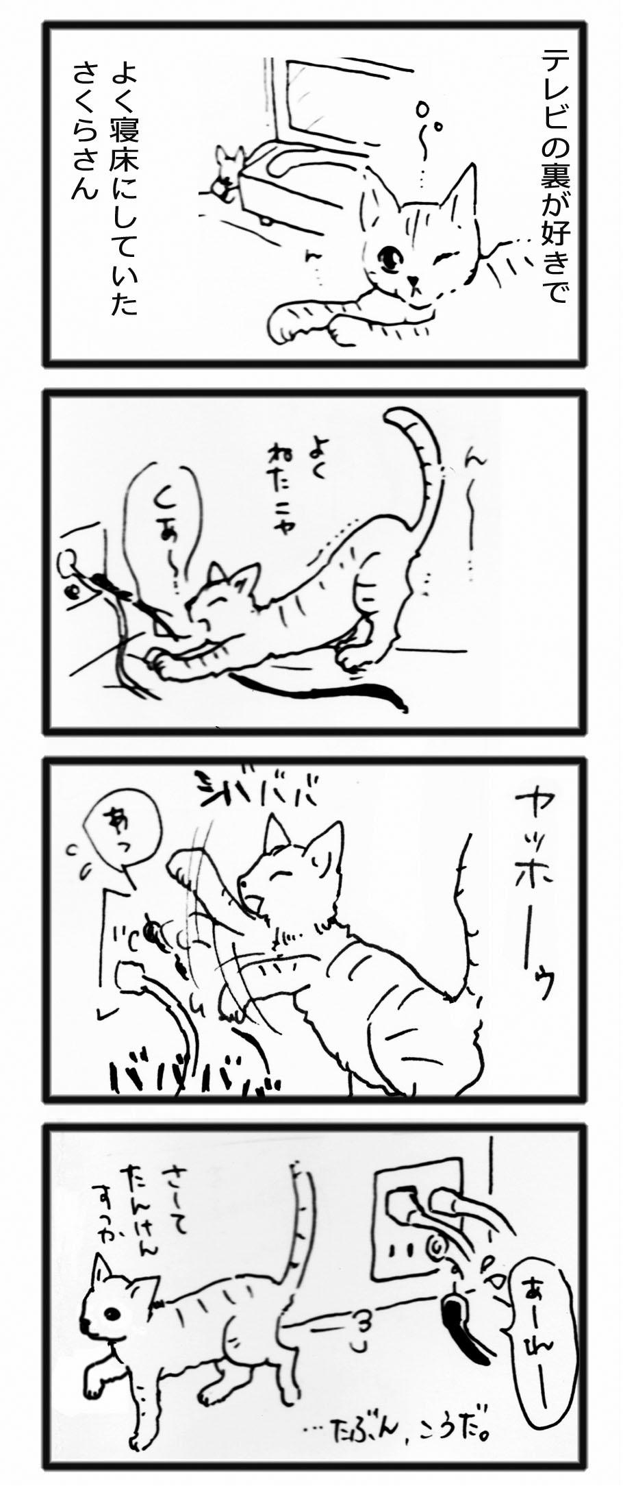 comic20121102_3.jpg
