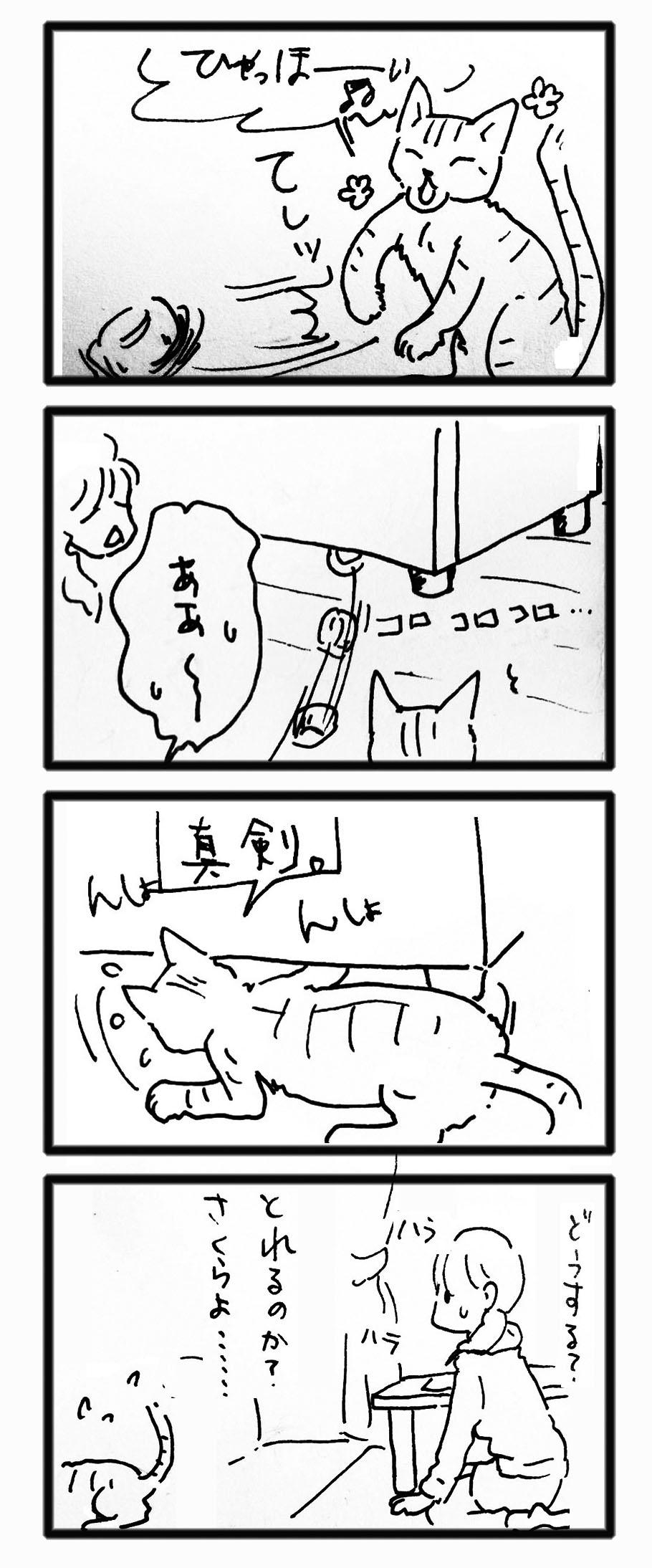 comic20121130_05.jpg