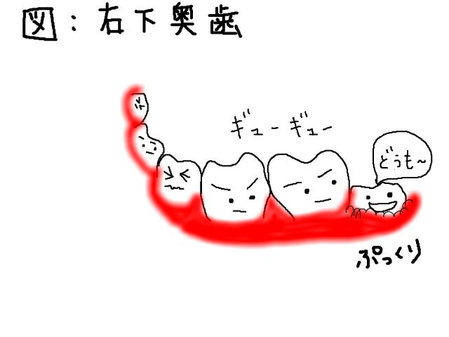 snap_sakurarako_20126416189.jpg
