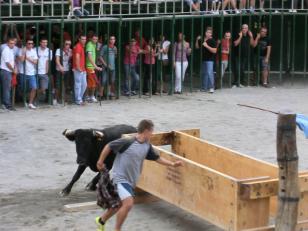 fiestaenjerica201215