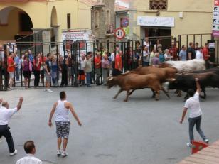 fiestaenjerica201213