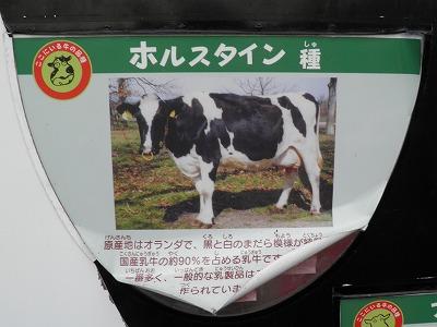 PA270028.jpg