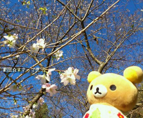 rakugaki_20121118_0005.jpg