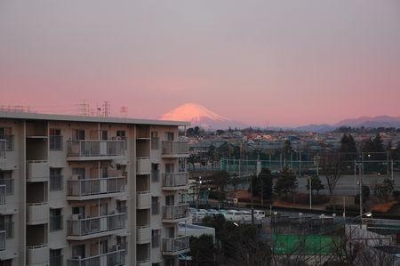 20121228fuji.jpg