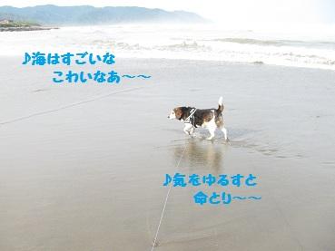 010_20120516191435.jpg